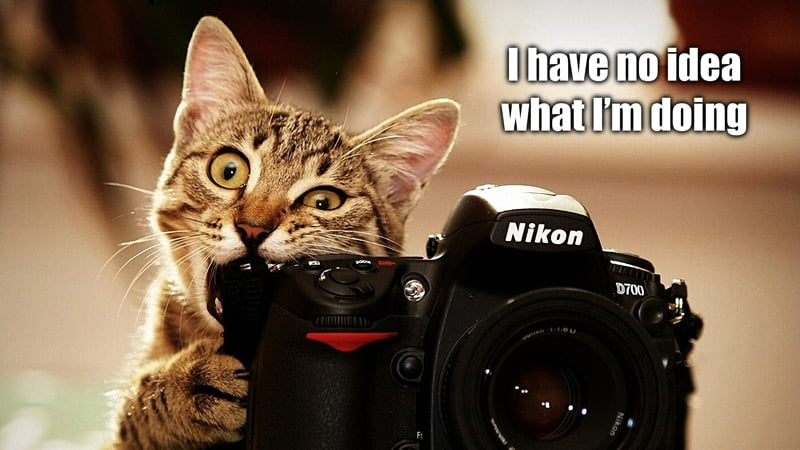 photography-meme