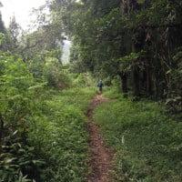Traill Running Menembus Hutan Gunung Lingkung